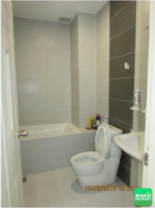 Lắp đặt thiết bị nhà vệ sinh đúng cách tạo không gian đẹp, tiện nghi